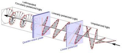 componenti ottici polarizzatori